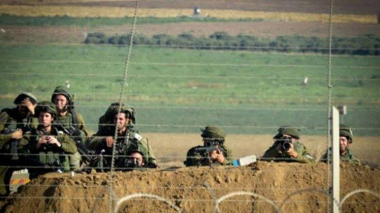 جيش الاحتلال الإسرائيلي يسرق 500 رأس ماعز من لبنان