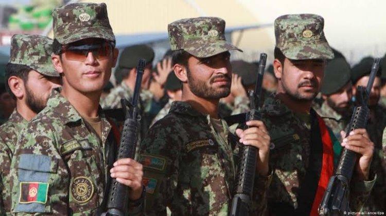 نواب كويتيون يرفضون استضافة الكويت للمترجمين الأفغان الذين عملوا مع الجيش الأمريكي